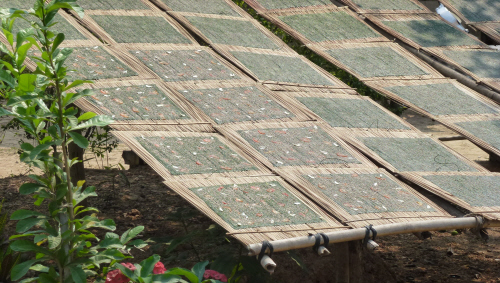 Seasoned river weed sheets being dried in the sun – these are then deep fried and taste delicious!
