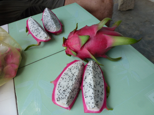 Dragon Fruit - our new favourite food.