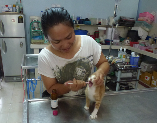 Jae, the vet, with another 'satisfied customer'.