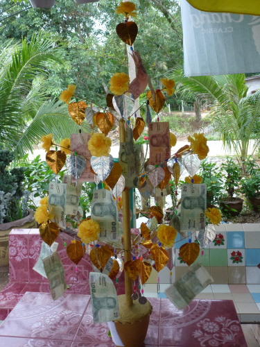 Money really does grown on trees in Thailand.