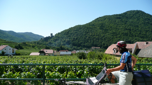 Looking out over the vineyards of Spitz.