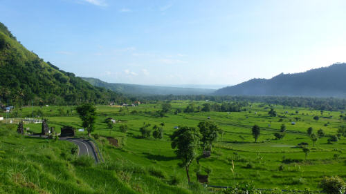 The Balinese scenery took our minds off the pain of the few small climbs we encountered.